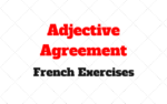 The adjectival agreement: French Exercises