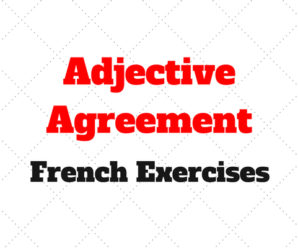 French adjective agreement gallery agreement letter format french adjective agreement quiz images agreement letter format adjective agreement french gallery agreement letter format french platinumwayz
