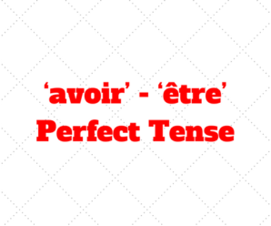 The perfect tense with 'avoir' and 'être' – French